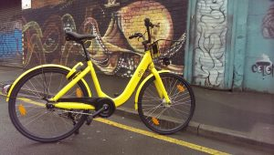 Photo of an Ofo bike