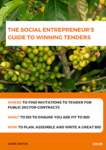 Cover of The Social Entrepreneur's Guide to Winning Tenders